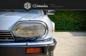 Jaguar XJS V12 Convertible 33